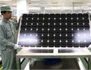 Trung Quốc đứng đầu về phát triển năng lượng sạch