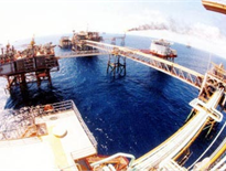 Dịch vụ dầu khí là